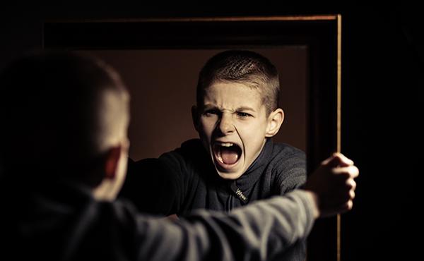 Atención a la diversidad: trastornos de la conducta